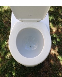 cs urine pic_2