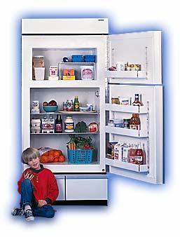 Energy Efficient Refrigerators, Freezers, and Sustainable